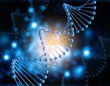 Human Biological Samples, Saliva, Blood, DNA fingerprint, tissue samples, blood samples, urine samples