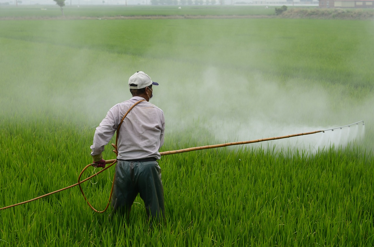 MARKETING AUTHORIZATION OF INSECTICIDES IN INDIA